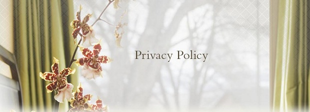 Privacy Policy for HK New Years Eve Website